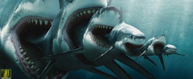 cesec-condivivere-2014-10-20-squali-della-finanza-sostenibile