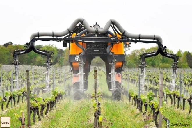FRANCE-AGRICULTURE-VITICULTURE-WINE